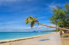 que ver en Martinica por libre